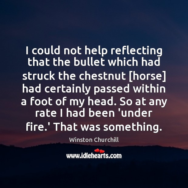 I could not help reflecting that the bullet which had struck the Winston Churchill Picture Quote