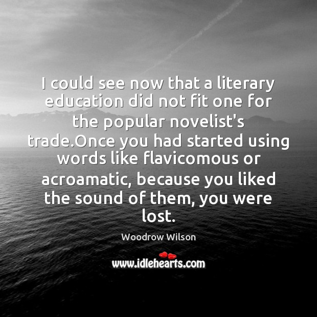 I could see now that a literary education did not fit one Woodrow Wilson Picture Quote
