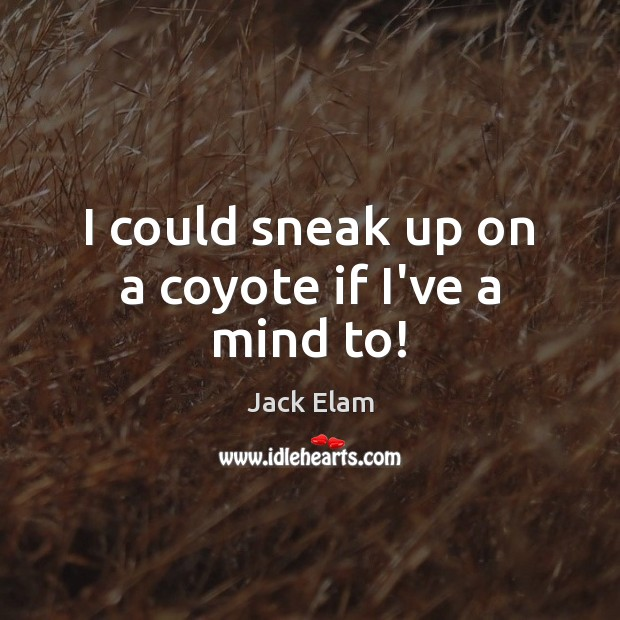 I could sneak up on a coyote if I've a mind to! Image