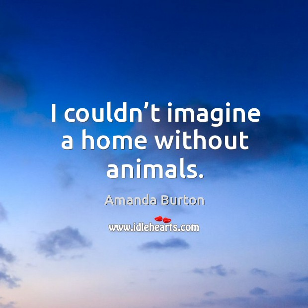 Image, I couldn't imagine a home without animals.