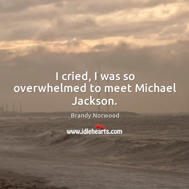 I cried, I was so overwhelmed to meet michael jackson. Brandy Norwood Picture Quote