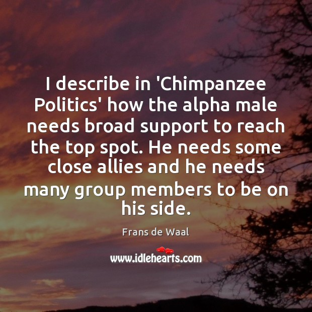 Image, I describe in 'Chimpanzee Politics' how the alpha male needs broad support