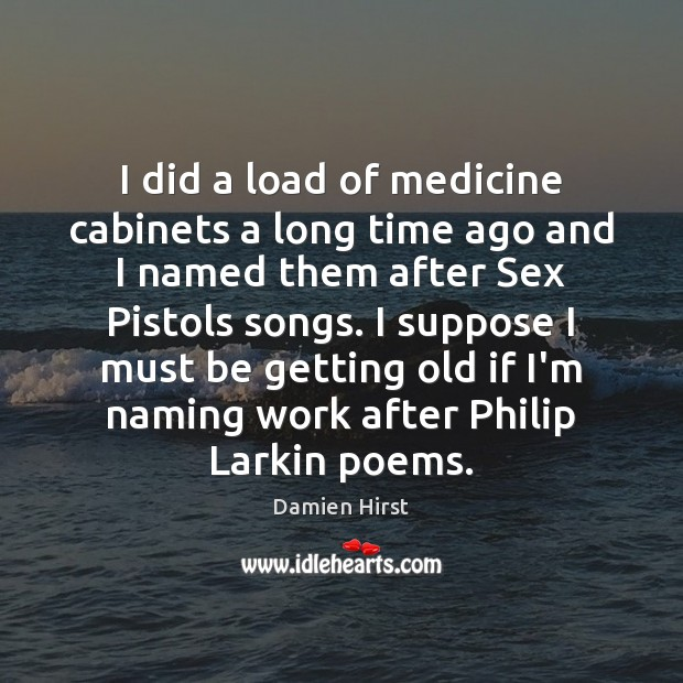 I did a load of medicine cabinets a long time ago and Damien Hirst Picture Quote