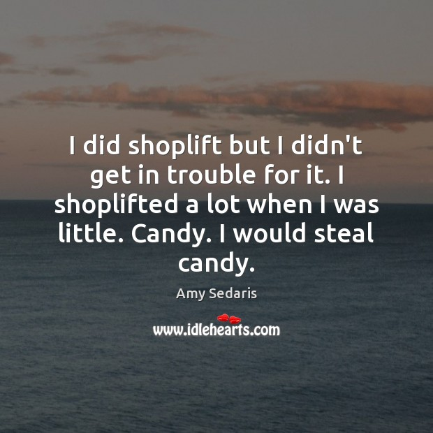 I did shoplift but I didn't get in trouble for it. I Amy Sedaris Picture Quote