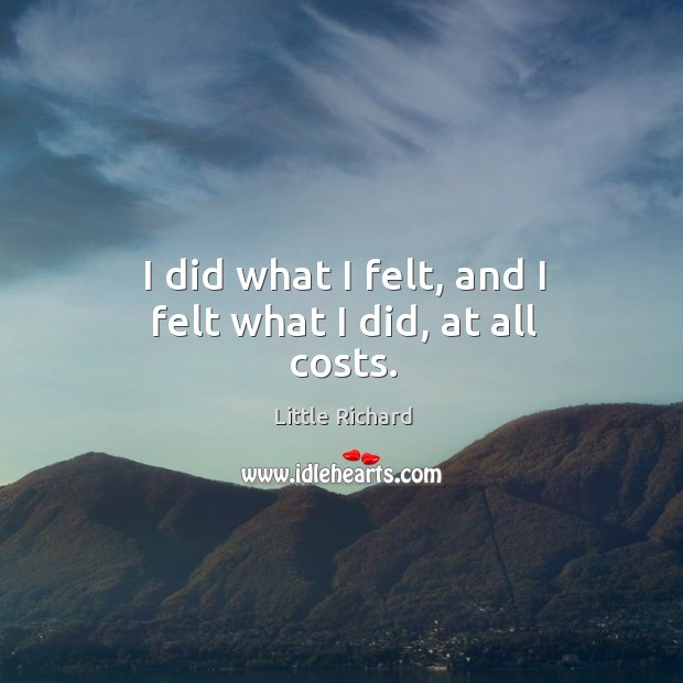 I did what I felt, and I felt what I did, at all costs. Little Richard Picture Quote
