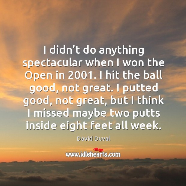 I didn't do anything spectacular when I won the open in 2001. David Duval Picture Quote