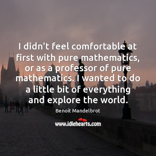 I didn't feel comfortable at first with pure mathematics, or as a Benoit Mandelbrot Picture Quote
