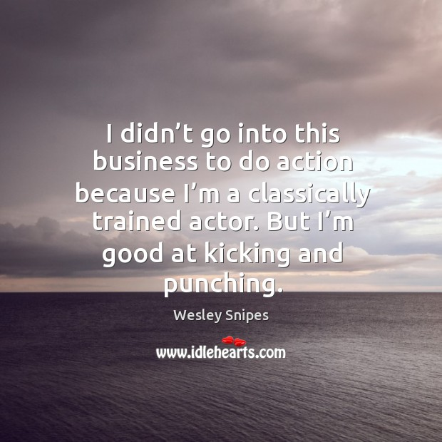 I didn't go into this business to do action because I'm a classically trained actor. Wesley Snipes Picture Quote