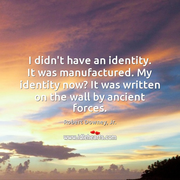 I didn't have an identity. It was manufactured. My identity now? It Robert Downey, Jr. Picture Quote