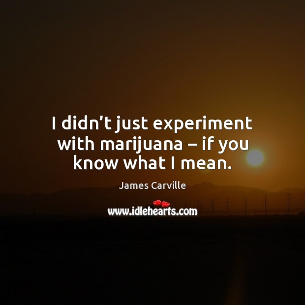 I didn't just experiment with marijuana – if you know what I mean. James Carville Picture Quote