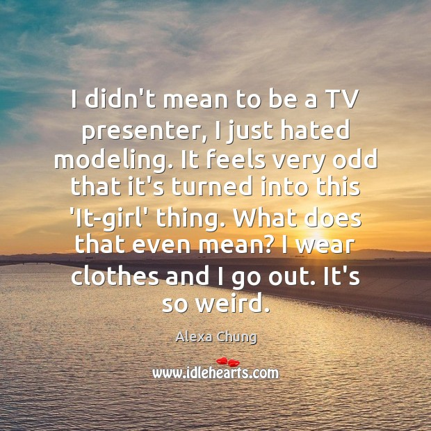 I didn't mean to be a TV presenter, I just hated modeling. Image