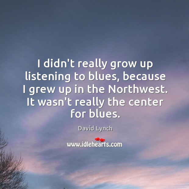 Image, I didn't really grow up listening to blues, because I grew up