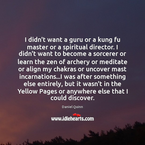 I didn't want a guru or a kung fu master or a Daniel Quinn Picture Quote