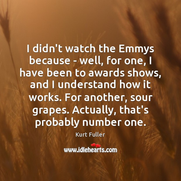 I didn't watch the Emmys because – well, for one, I have Kurt Fuller Picture Quote
