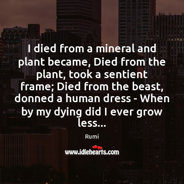 I died from a mineral and plant became, Died from the plant, Rumi Picture Quote