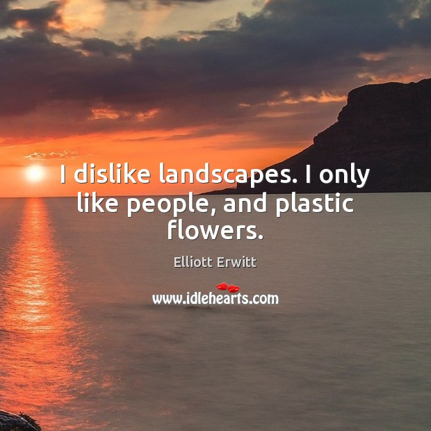 I dislike landscapes. I only like people, and plastic flowers. Image
