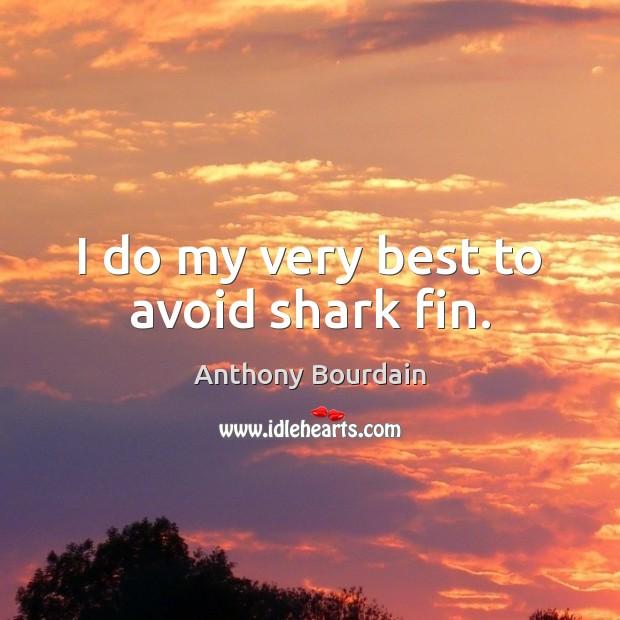 Image, I do my very best to avoid shark fin.