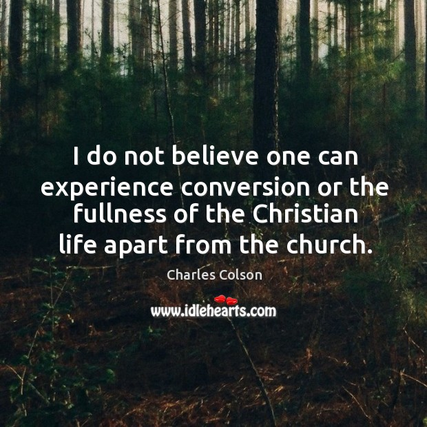 I do not believe one can experience conversion or the fullness of Image