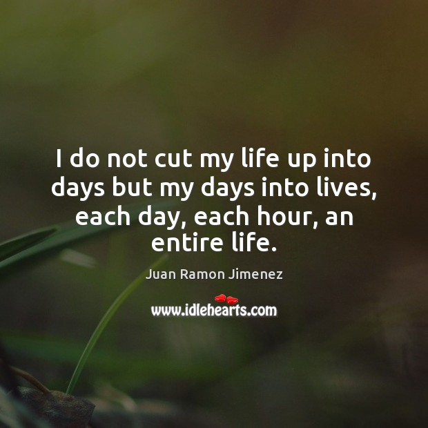 I do not cut my life up into days but my days Image