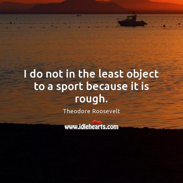 Image, I do not in the least object to a sport because it is rough.