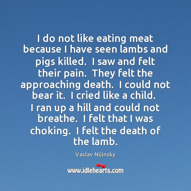 Image, I do not like eating meat because I have seen lambs and