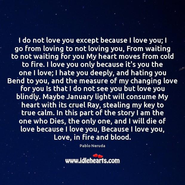 I do not love you except because I love you; I go Image