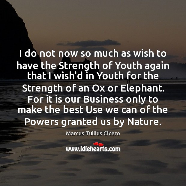 Image, I do not now so much as wish to have the Strength