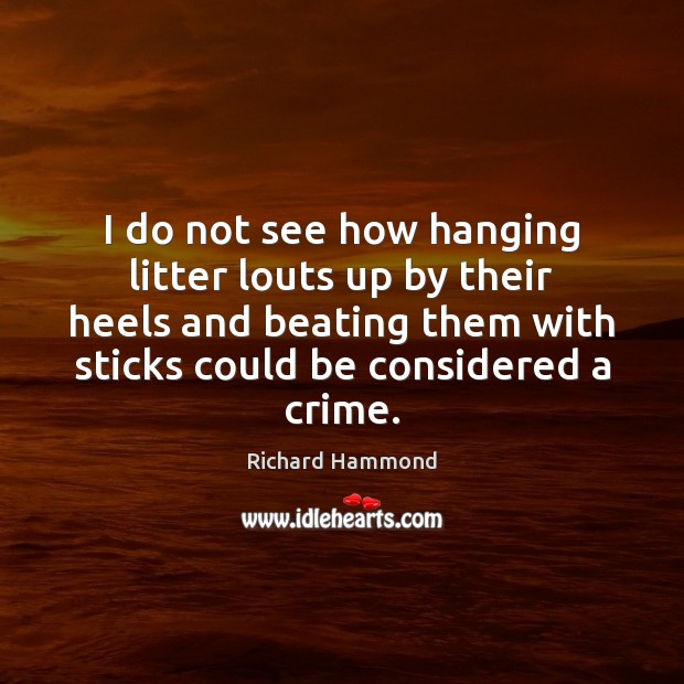 I do not see how hanging litter louts up by their heels Richard Hammond Picture Quote