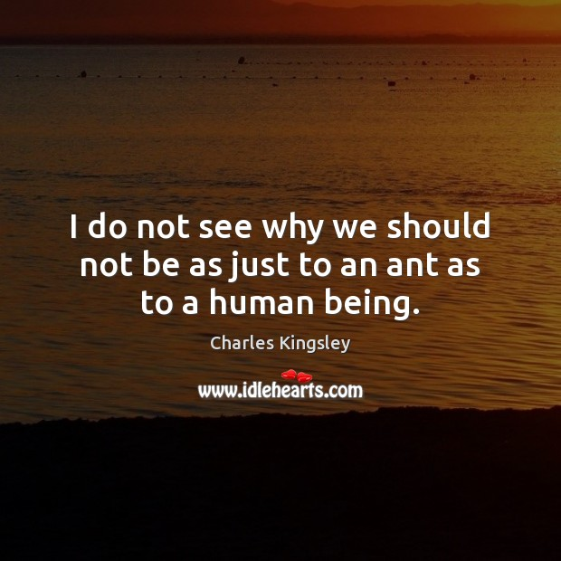 I do not see why we should not be as just to an ant as to a human being. Charles Kingsley Picture Quote