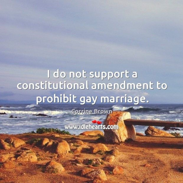 I do not support a constitutional amendment to prohibit gay marriage. Image