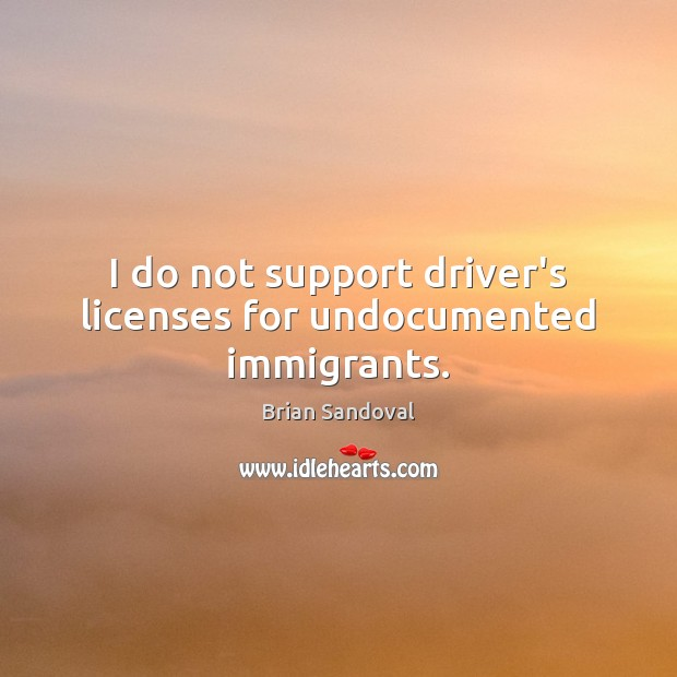 Image, I do not support driver's licenses for undocumented immigrants.