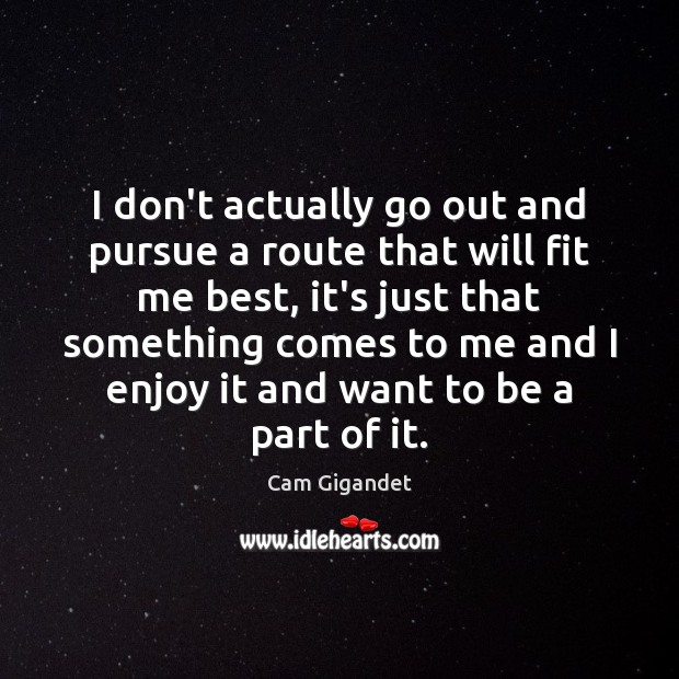 I don't actually go out and pursue a route that will fit Cam Gigandet Picture Quote