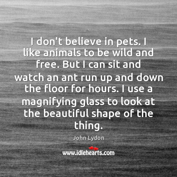 I don't believe in pets. I like animals to be wild and Image