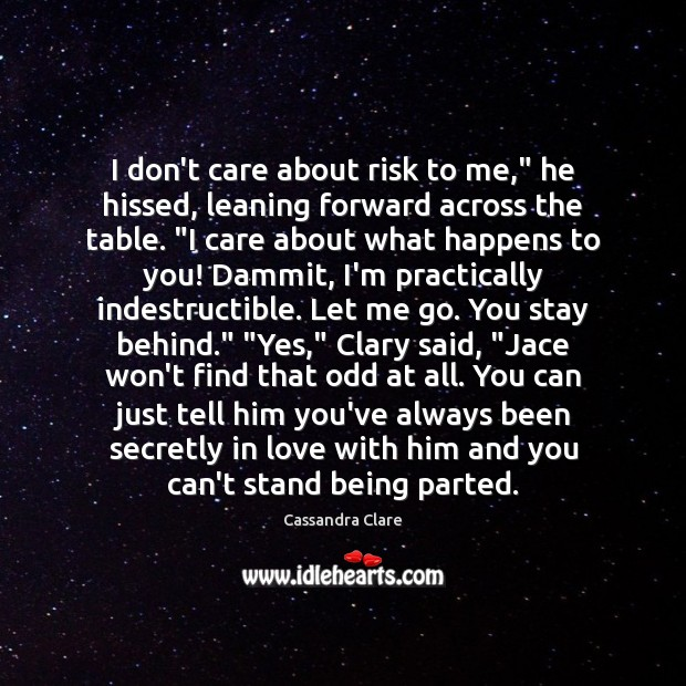 """I don't care about risk to me,"""" he hissed, leaning forward across Image"""