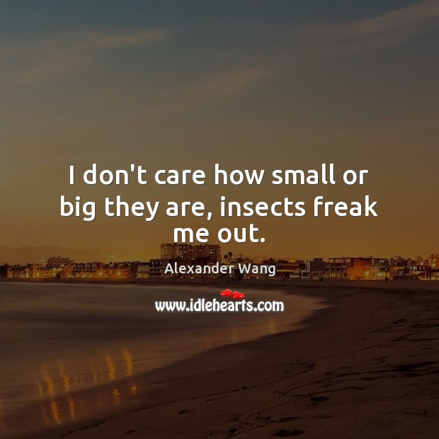 I don't care how small or big they are, insects freak me out. Image