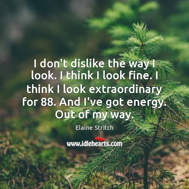 I don't dislike the way I look. I think I look fine. Elaine Stritch Picture Quote