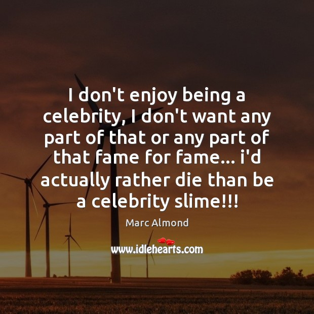 I don't enjoy being a celebrity, I don't want any part of Image