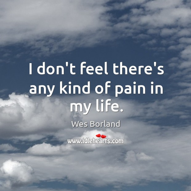 I don't feel there's any kind of pain in my life. Wes Borland Picture Quote
