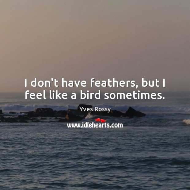 I don't have feathers, but I feel like a bird sometimes. Yves Rossy Picture Quote