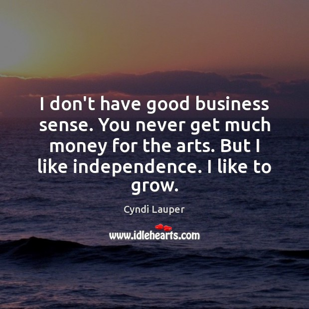 I don't have good business sense. You never get much money for Cyndi Lauper Picture Quote