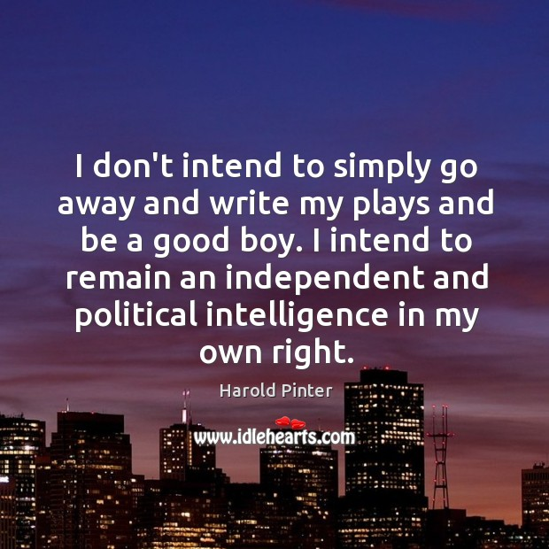 I don't intend to simply go away and write my plays and Image