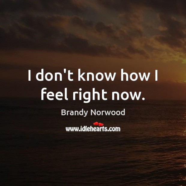I don't know how I feel right now. Brandy Norwood Picture Quote