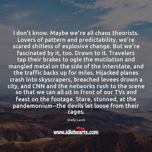 I don't know. Maybe we're all chaos theorists. Lovers of pattern and Image