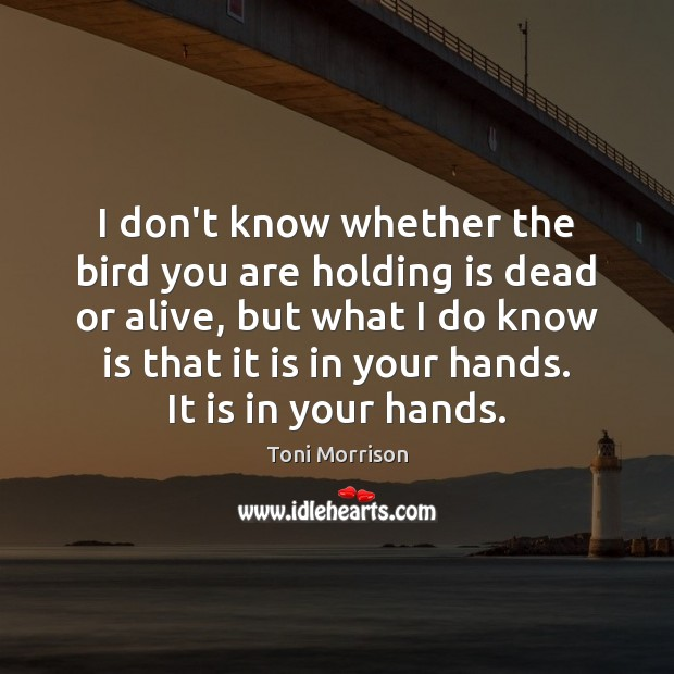 I don't know whether the bird you are holding is dead or Toni Morrison Picture Quote