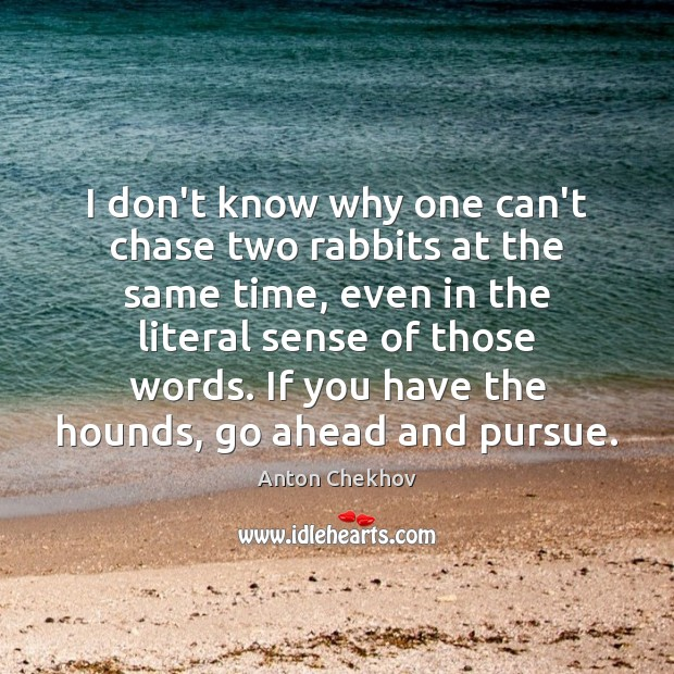 I don't know why one can't chase two rabbits at the same Image