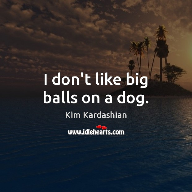 I don't like big balls on a dog. Image