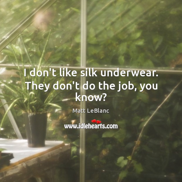 I don't like silk underwear. They don't do the job, you know? Matt LeBlanc Picture Quote