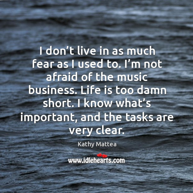 I don't live in as much fear as I used to. I'm not afraid of the music business. Image