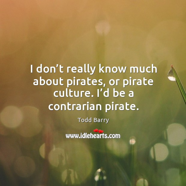 I don't really know much about pirates, or pirate culture. I'd be a contrarian pirate. Image