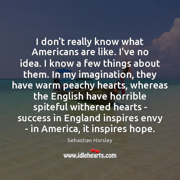 I don't really know what Americans are like. I've no idea. I Sebastian Horsley Picture Quote
